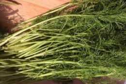 立秋後包餃子,用上這種蔬菜,增食慾、促消化,吃一個滿口留香