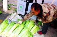齊白石:我能用畫換你的白菜嗎?菜農:休想!
